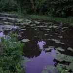 Canal Twilight