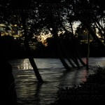 Schuykill Floodwater
