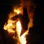 Firebird 2012 19J