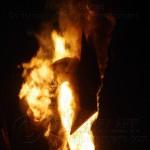 Firebird 2012 21M