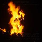 Firebird 2012 58BA