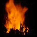 Firebird 2012 72BQ