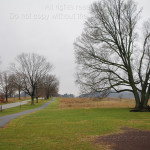 Gray Day in Valley Forge 13E