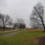 Gray Day in Valley Forge 14F