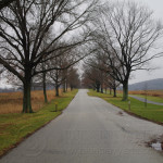 Gray Day in Valley Forge 18J