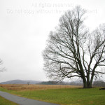 Gray Day in Valley Forge 19K