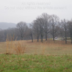Gray Day in Valley Forge 60BE
