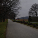 Gray Day in Valley Forge 7BO